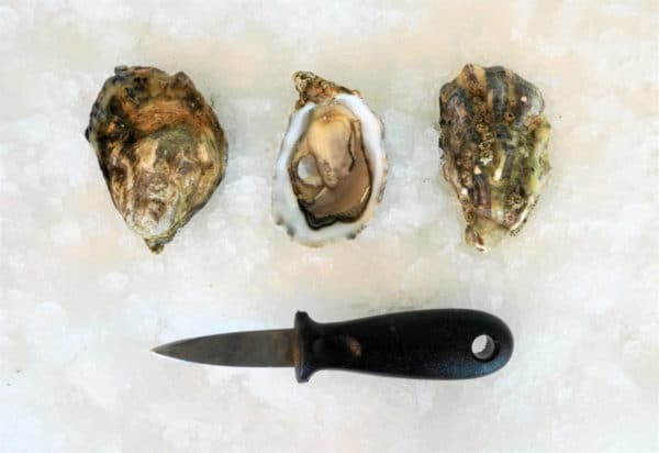 Bretonse creuse oesters met oestermes