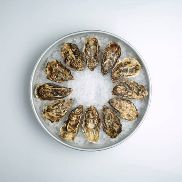 BBQ Oester